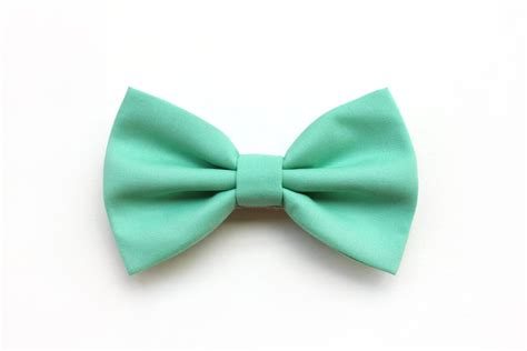 s wedding bow tie mint green bow tie for the groom