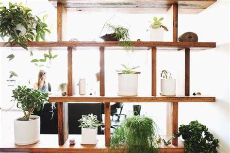 Plant Room Divider by 17 Best Images About Plant Divider On Pinterest Inside