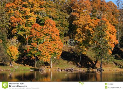 colorful hill colourful hill royalty free stock image image 1249246