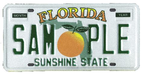 Florida Vehicle Registration Service 800/322 1261