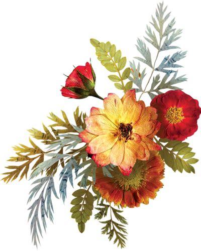 sognare fiori colorati quando sogniamo i fiori cosa significa e quali i numeri