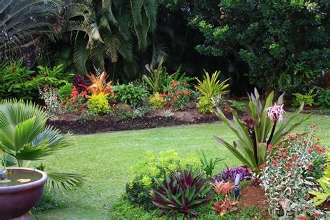 Tropical Garden Ideas Pictures A Guide To Winter In The South Florida Garden