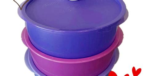 Tupperware Compact Canister 4pcs Pink Kuning tupperware brand malaysia tupperware tupperware free shipping garden 3x600ml compact