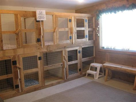 places to board dogs 25 best ideas about boarding kennels on puggle rescue outdoor