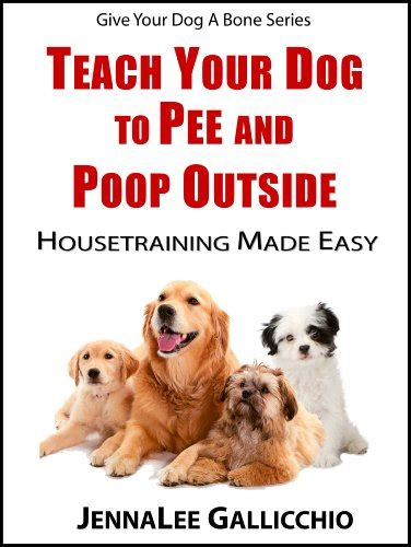 older dog peeing and pooping in house discover the book teach your dog to pee and poop outside housetraining made easy