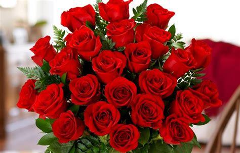 Two Dozen Roses meaning of two dozen roses proflowers