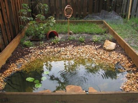 boxed turtle backyard habitat the great outdoors pinterest