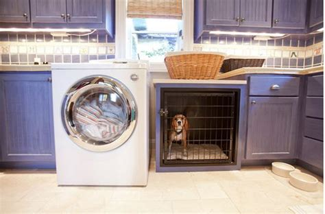 cool laundry 20 cool laundry room for pet home design and interior