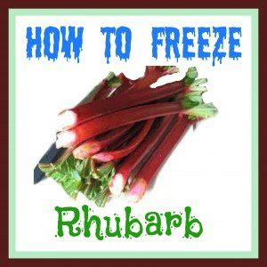 Car Key In Mail Sweepstakes - how to freeze rhubarb canadian freebies coupons sweepstakes deals
