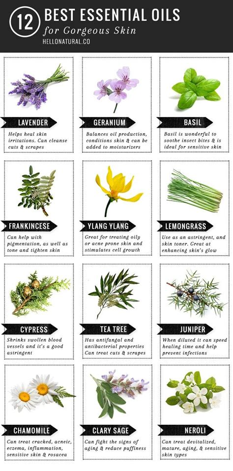 Must Aromatherapy Oils by 25 Best Ideas About Essential Oils For On