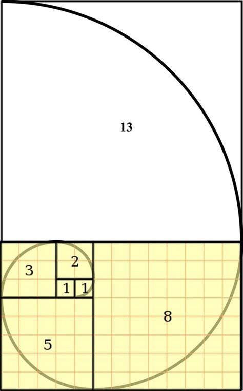 golden ratio dna spiral 17 best images about math fibonacci teaching golden