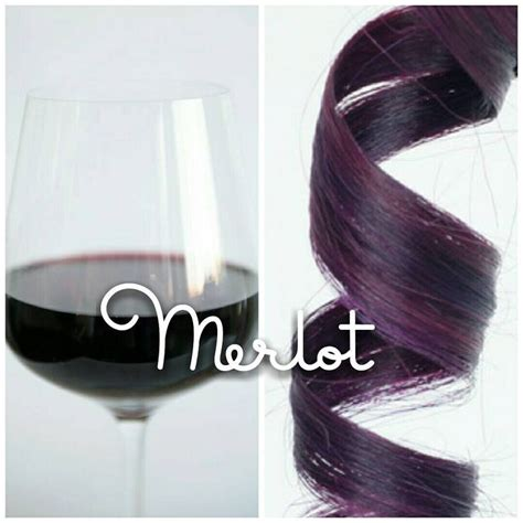 shoo for colored hair best 25 wine colored hair ideas on wine