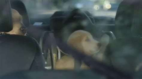 who sings the song new subaru commercial 2014 forester subaru dog commercial song html autos post