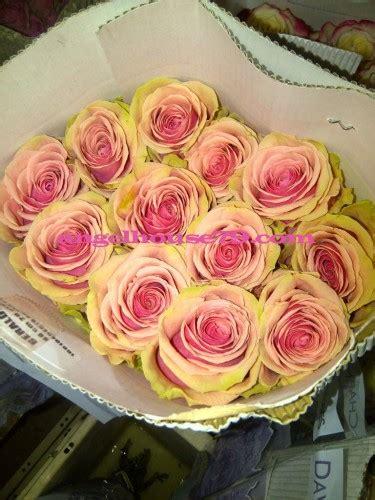 Mukena Premium Mawar Tangkai Indah ecuador jakarta mawar impor ecuador florist