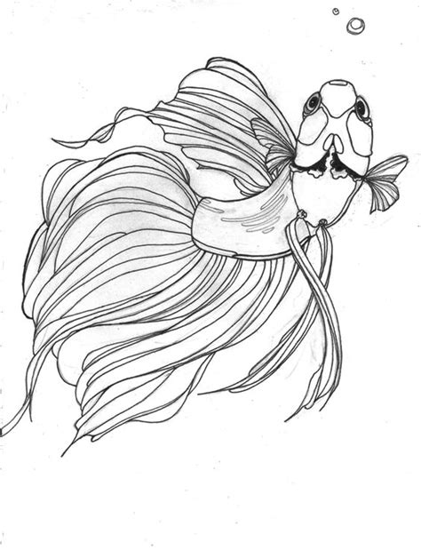 coloring pages of betta fish betta drawing would make a great tattoo betta fish