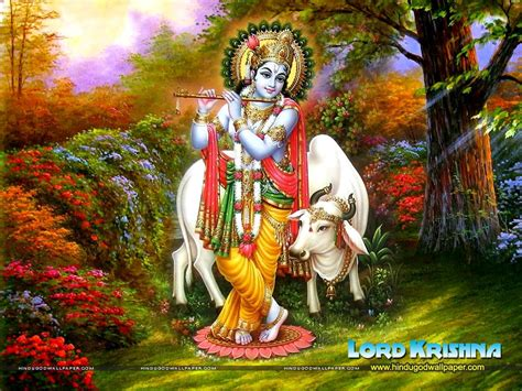 wallpaper for desktop god of krishna krishna and cow desktop wallpaper