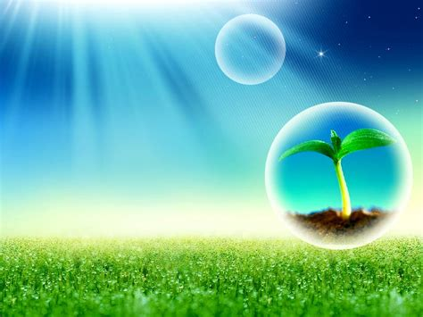 free spring sunshine and rain grass backgrounds for