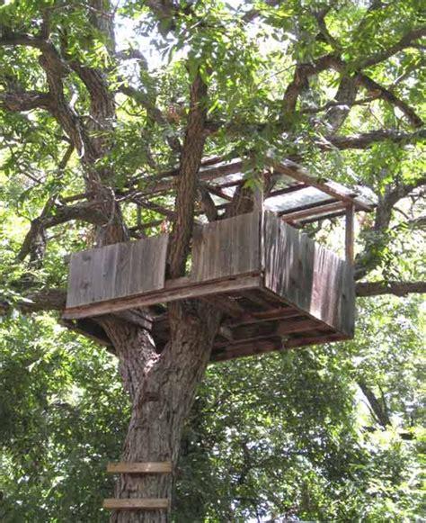 hous com simple tree house www pixshark com images galleries