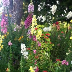 Pretty Flower Gardens Pretty Flower Garden From The Garden