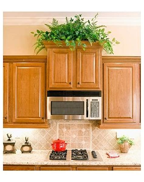 plants above kitchen cabinets plants grow on top of kitchen cabinets greenery for above
