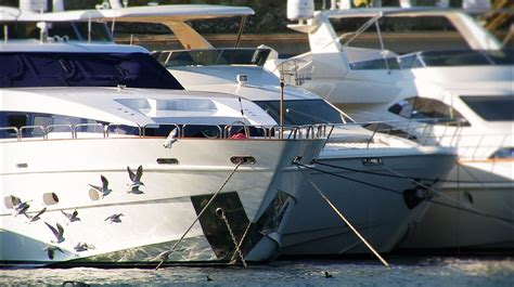 yacht rental san diego san diego yacht rental rent a leight star yacht charters