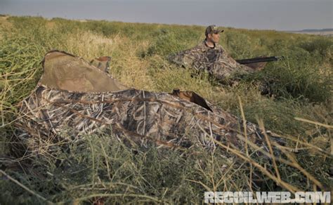 layout blind turkey hunting how to hunting from a layout blind recoil