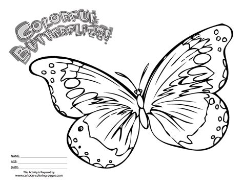 coloring book butterfly printouts butterfly printouts coloring home