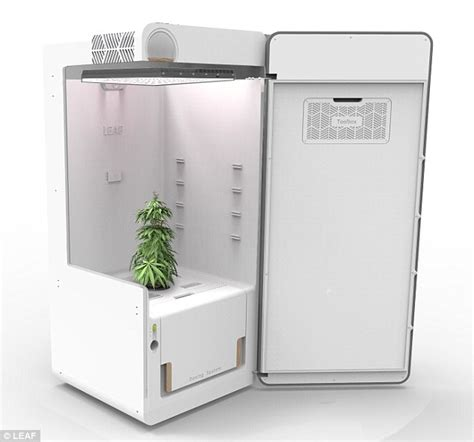 Height Of Kitchen Cabinet by Leaf Refrigerator Can Grow Medical Marijuana Plants In
