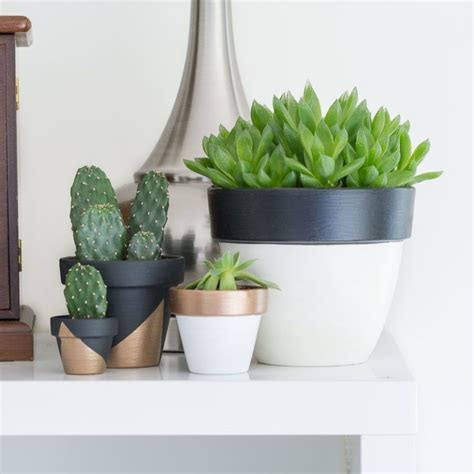 modern plant pots modern mini painted plant pots project home decorating