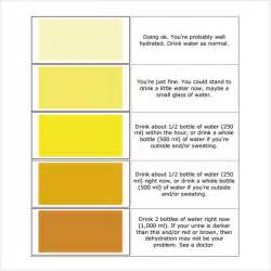 color urine urine color chart 7 free for pdf