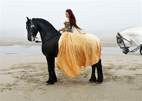 Beach Decor For The Home by Wind Swept Manes Horse Photography Collection Jody L