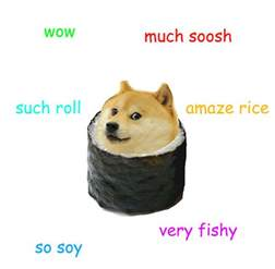 The Doge Meme - the best of the doge meme