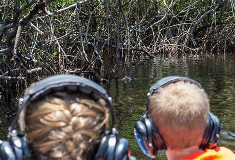 everglades boat tours national park everglades national park visiting the everglades with