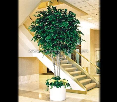 artificial tree with twinkle lights silk ficus tree with twinkle lights fundraiser