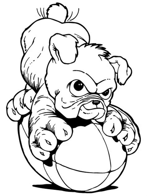baby bulldogs coloring pages cute bulldog puppy clipart clipart panda free clipart