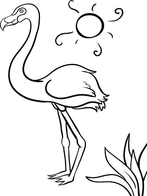 Flamingo Coloring Pages Images Of Photo Albums Flamingo Photo Coloring Page