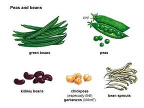 Types Meaning pea noun definition pictures pronunciation and usage notes