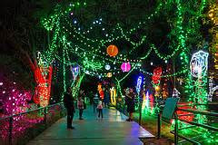 brew lights at zoo lights park zoological society organizations and or