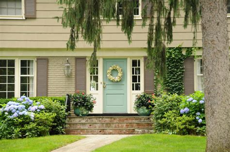 climbing plants for front of house 59 front door flower and plant ideas