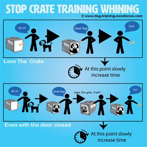 how to get a puppy to stop whining stop crate whining