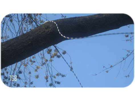 tire swing knot tying thegoozbeezclick 13 fun easy steps on hanging a vertical
