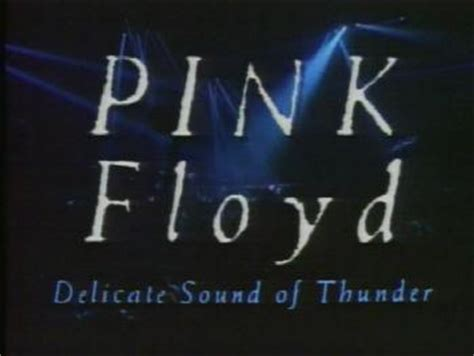 pink floyd comfortably numb delicate sound of thunder new ntsc dvd pink floyd delicate sound of thunder