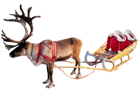 Free 2d 3d Home Design Software by Christmas Reindeer And Sleigh
