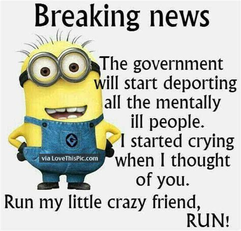 a breaking comedy baggs books minion breaking news quote pictures photos and