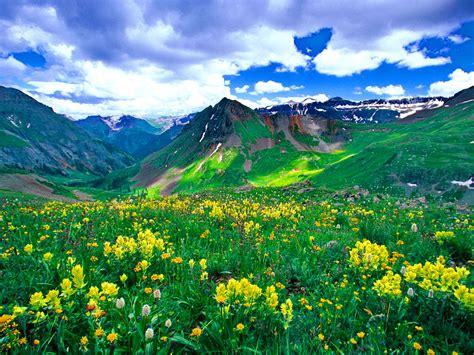 mountain meadow wallpaper  wallpapersafari