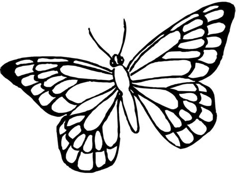 butterfly coloring pages pdf coloring pages printable butterfly coloring page free