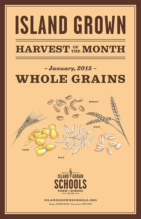 whole grains month 2015 harvest of the month whole grains give seeds a chance