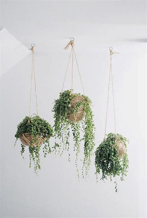Hanging Plant Hangers - macrame plant hanger patterns to embellish any rustic or