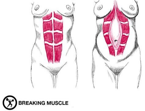 exercises  rebuilding  core  pregnancy