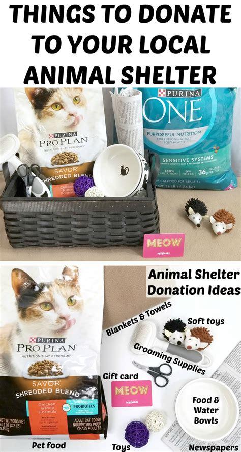 donate   local animal shelter making